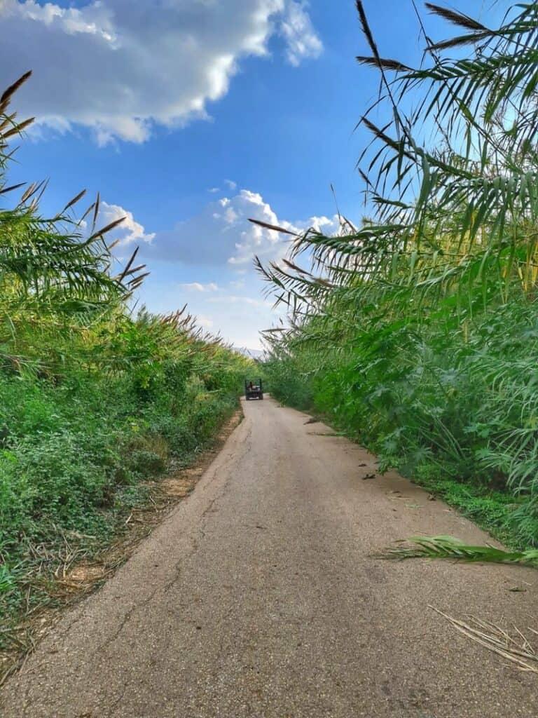 מסע באיזי אטרקצית ריינג'רים