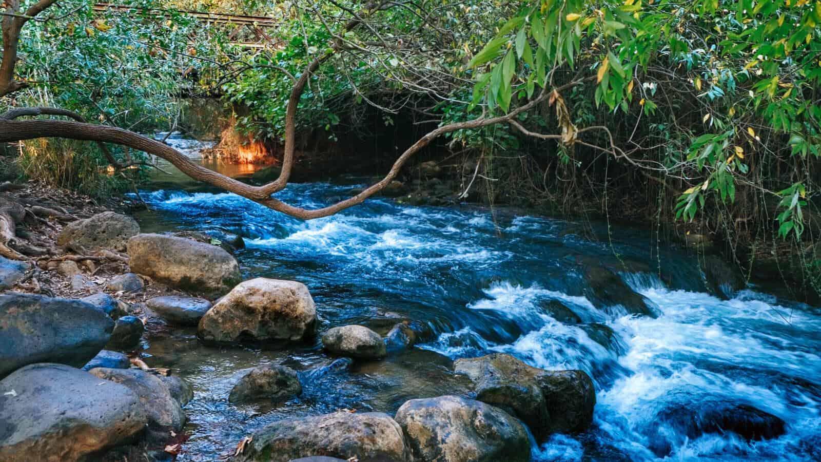 נהר הירדן והבניאס